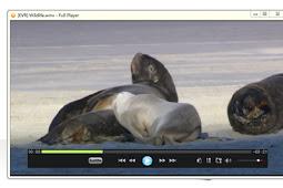 برنامج مشغل فيديو جميع الصيغ Full Player