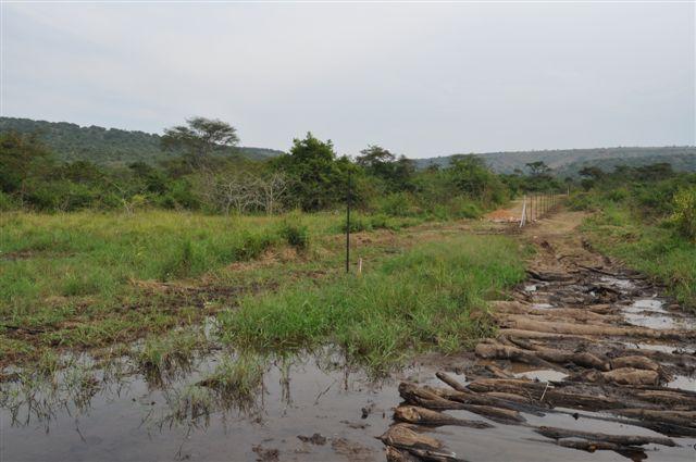 Tnh Wildlife Management Solutions