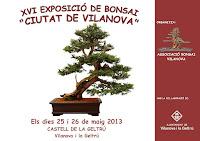 EXPO 2013