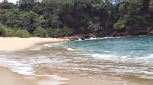 pantai pasir putih taman nasional meru betiri