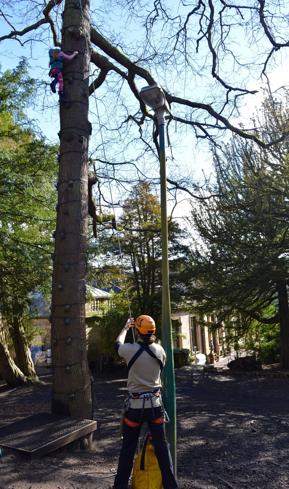 Beamish Wild | School Holiday Club & Activities in County Durham | North East England - climbing to the top of the tree