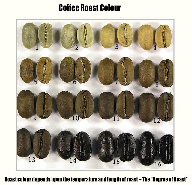 Rang cà phê và sự biến đổi của hạt cà phê qua các giai đoạn