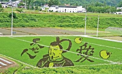 Asmara Life Lukisan di sawah padi Jepun secara live