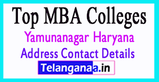 Top MBA Colleges in Yamunanagar Haryana