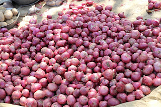 Onion pices pick up after 18 months
