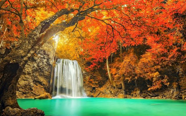 tải Hình nền chũ đề thiên nhiên đẹp