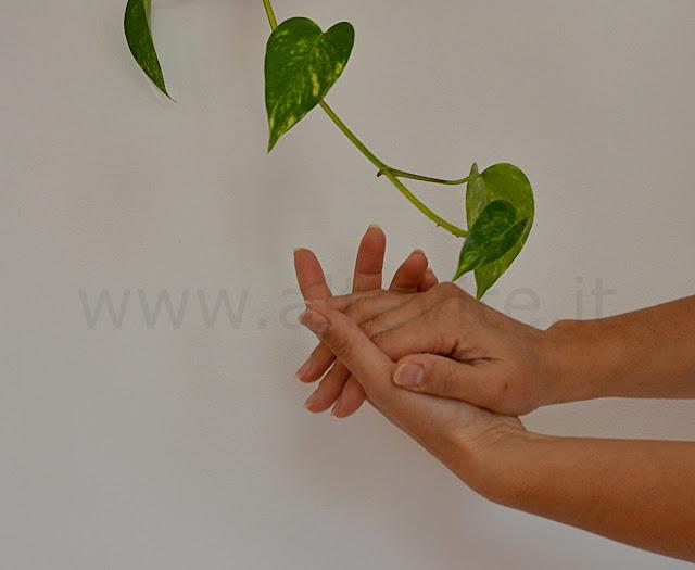 creme mani naturale