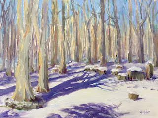 fallen trees, forest, winter, purple and blue