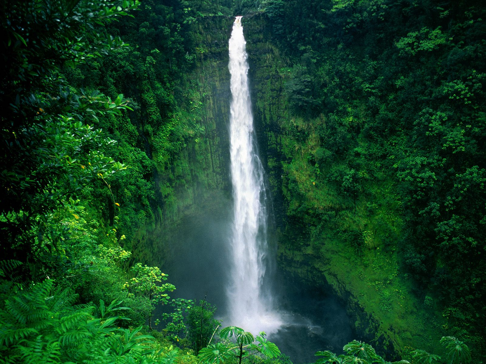 Akaka Falls Wallpaper Honokohau Falls On The Island Of Kauai Hawaii Week Trip