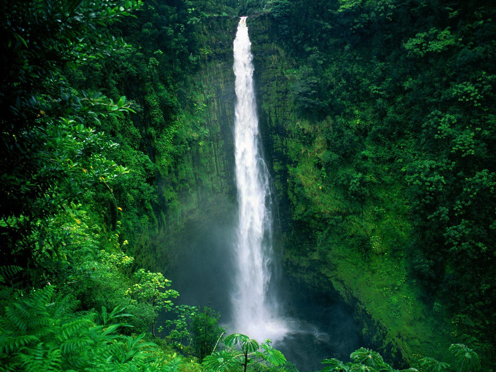 Akaka Falls Wallpaper Honokohau Falls On The Island Of Kauai Hawaii