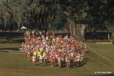 Apalachee Regional Park Championship Cross-Country Course