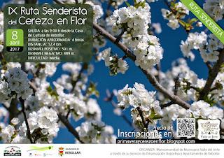 IX Ruta Senderista del Cerezo en Flor