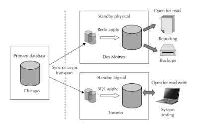 Oracle DBA, Oracle Database Tutorials and Materials, Oracle DBA Learning, Oracle DB Guides
