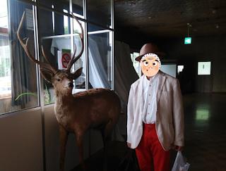 北海道の動物