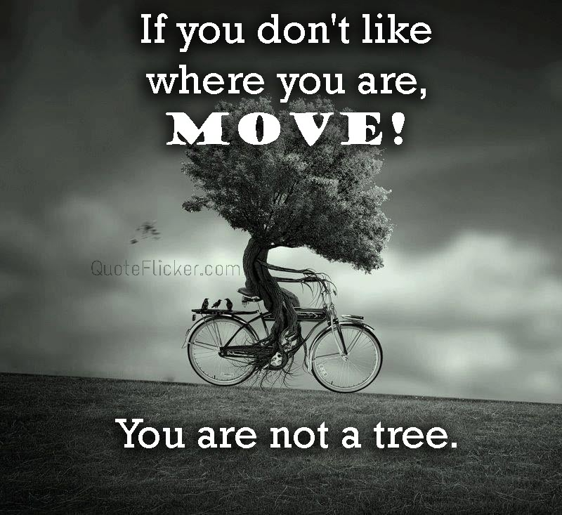 You Are Not A Tree Quotes Collection