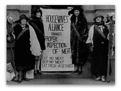 the progressive era essay women during the progressive era