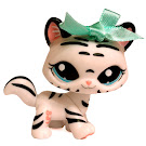 Littlest Pet Shop LPSO com Tiger (#1498) Pet