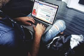 Como ter o seu site profissional por baixo custo