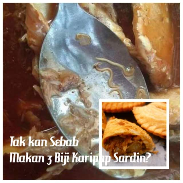 Tak kan Sebab Makan 3 Biji Karipap Sardin?