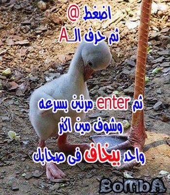 صور منشورات للفيس بوك