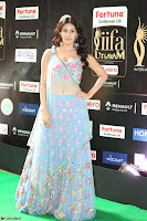 Amyra Dastur in Flower Print Choli Transparent Chunni at IIFA Utsavam Awards 44.JPG
