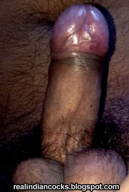 bangladeshi gaycock