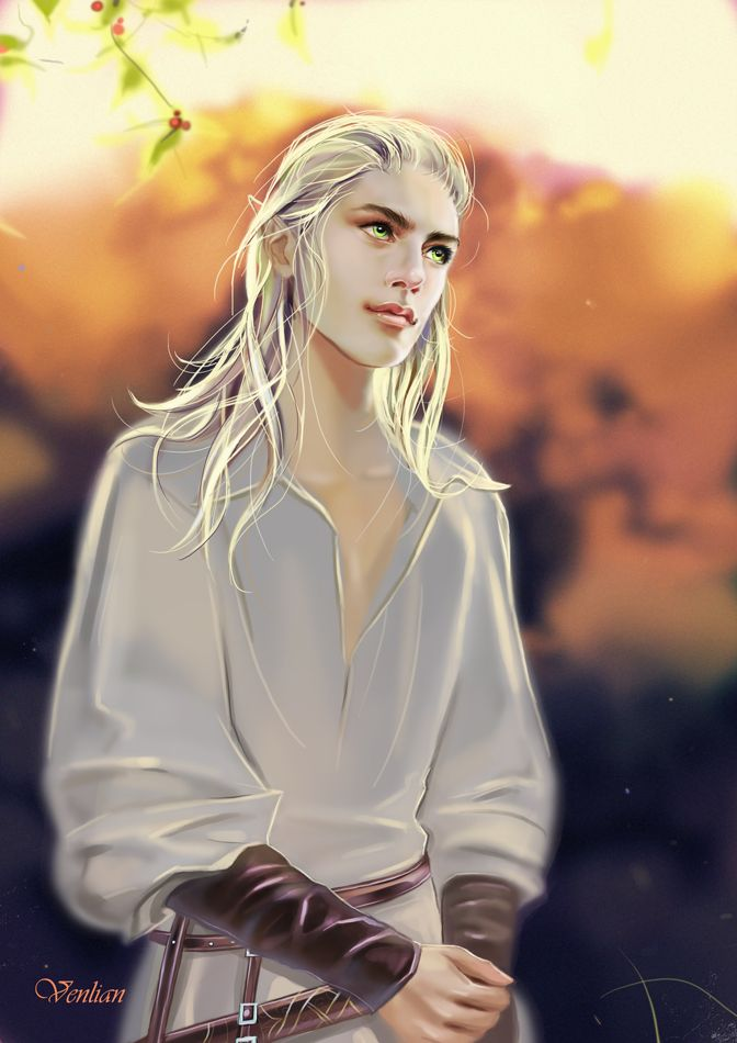 MALE ELVEN