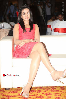 Actress Catherine Tresa Unveils Intex Air Conditioners  0149.jpg