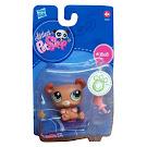Littlest Pet Shop Singles Bear (#1303) Pet