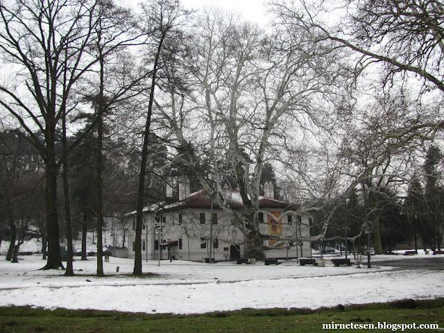 Сербия на практике: погода зимой