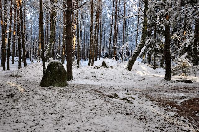 Kurhany i kamienne kręgi Gotów w Węsiorach