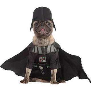 dog-halloween-costumes-ideas