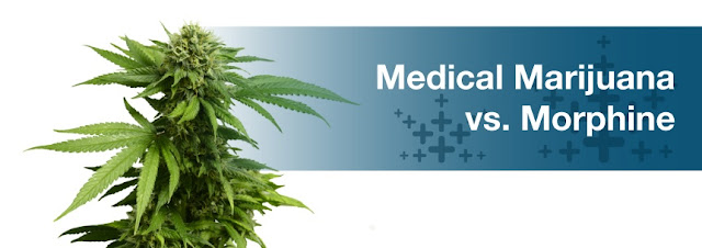 What's the difference between Medical Marijuana and Morphine?