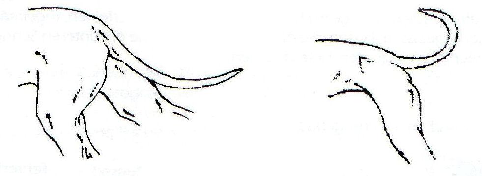 proto diagrama de cableado de micrologix 1500