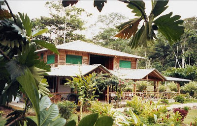 Cabañas Suchipakari Jungle Lodge