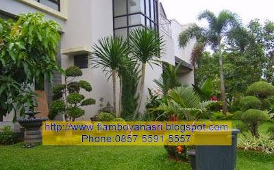 Tukang Taman Surabaya bergaya menawan