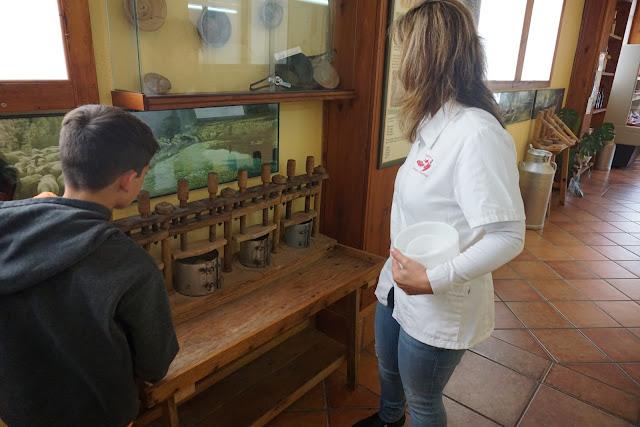 visita guiada quesería Morella
