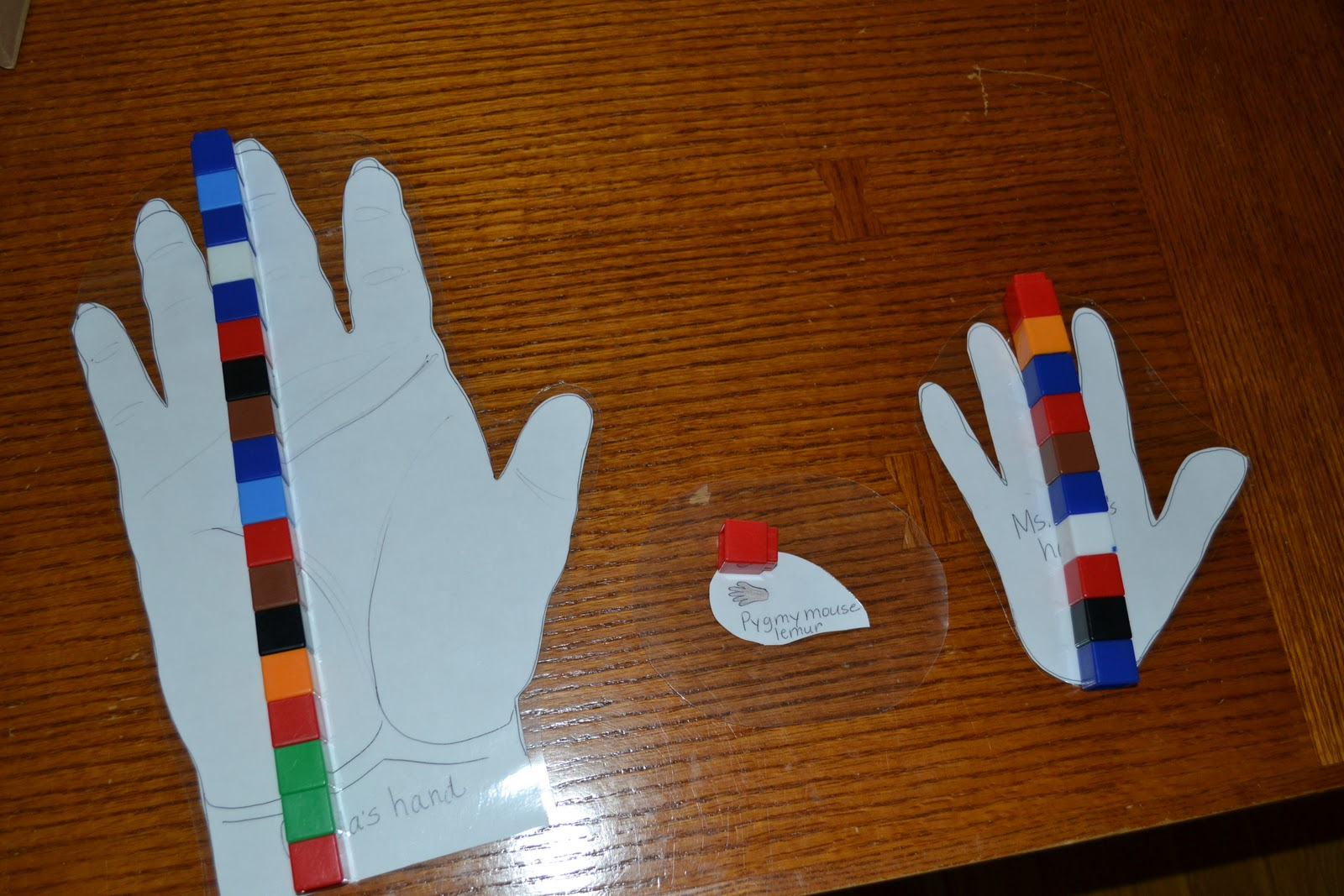 From The Hive: beginning measuring- preschool style