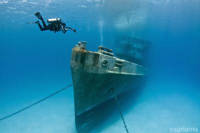 Plongé sous marine aux îles caimans