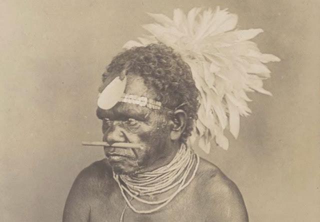 Kangaroo-bone nose piercing implement is Australia's oldest Indigenous jewellery