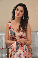 Actress Richa Panai Pos in Sleeveless Floral Long Dress at Rakshaka Batudu Movie Pre Release Function  0108.JPG