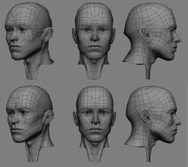 automob 3d anatomy tutorial - 736×654