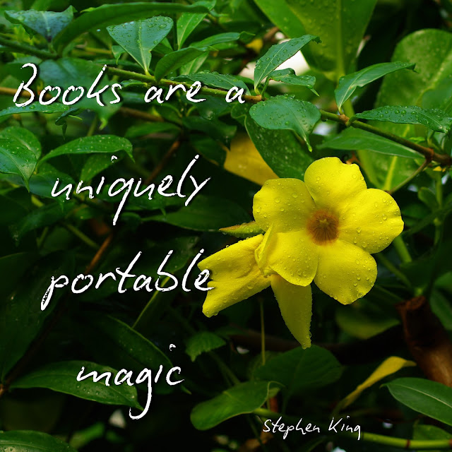 Books are a uniquely portable magic. - Stephen King