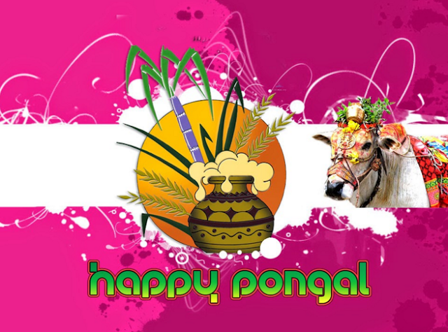 Pongal Wallpapers 2017