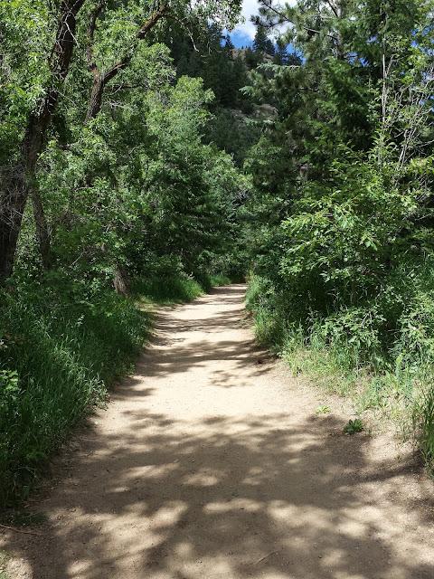 Lair o' the Bear Park - Early Morning Run blog