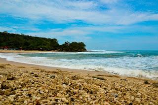 wisata pantai santolo ranca buaya