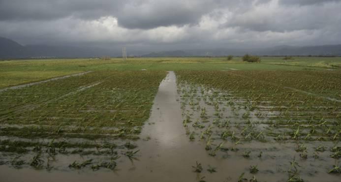 Desalojos de emergencia en Puerto Rico tras falla de represa