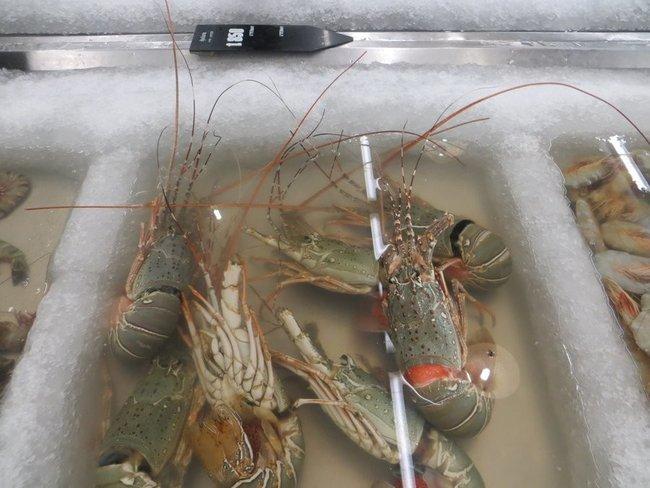 Цены на омары в Таиланде