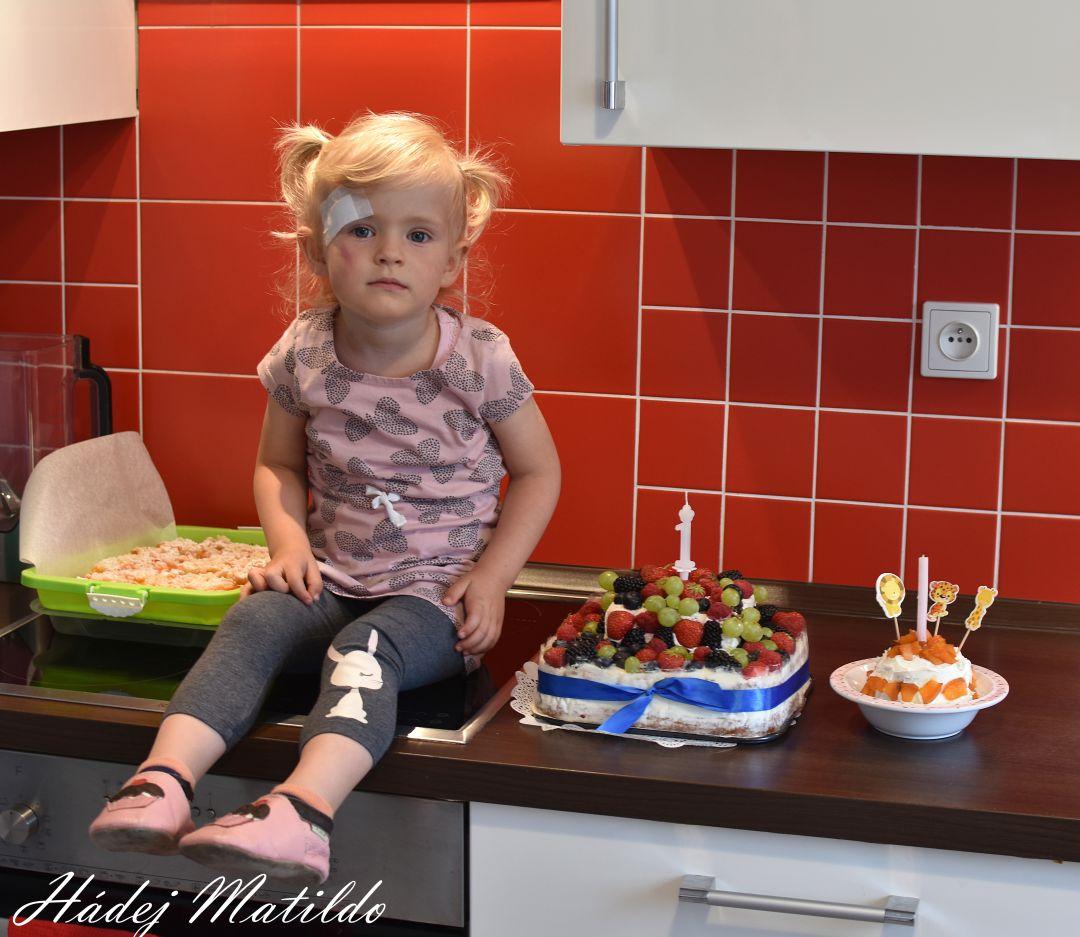 první narozeniny, dárek k prvním narozeninám, koník futu, tipy na dárek