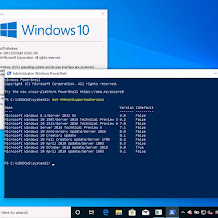 Microsoft Umumkan Rilis Windows 10 May 2019 Update